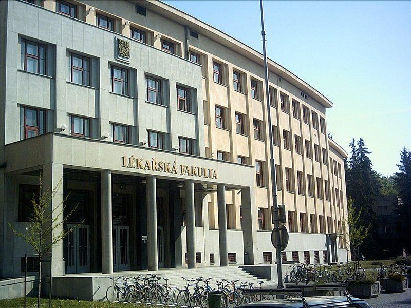 Erste Deutschsprachige Universität